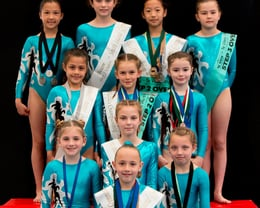 2017/2018 Step 2 and 3 Gymnasts