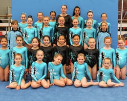 2016/2017 Competitive Gymnasts
