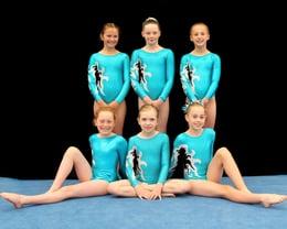 2016/2017 Step 3 and 4 Gymnasts